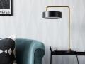 blackwhite_6083_livingroom_detail1