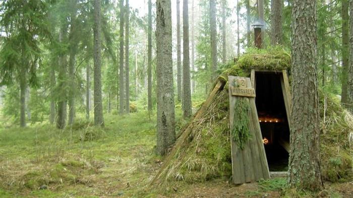 лесной отель